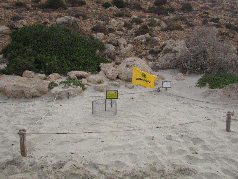 La Baia dei Conigli di Lampedusa n. 1 a livello europeo  premiata con il Travel Choice 2014