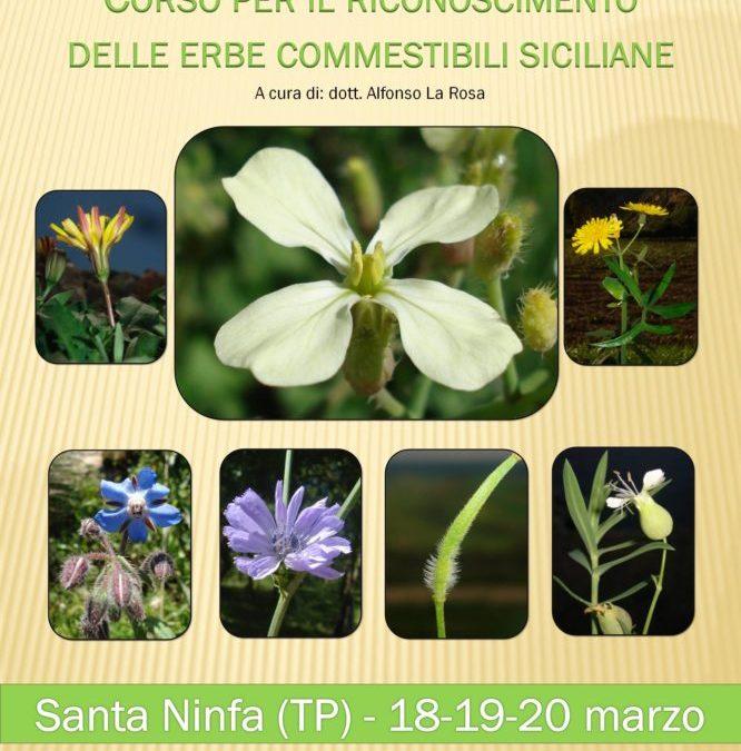 Corso per il riconoscimento delle erbe commestibili siciliane